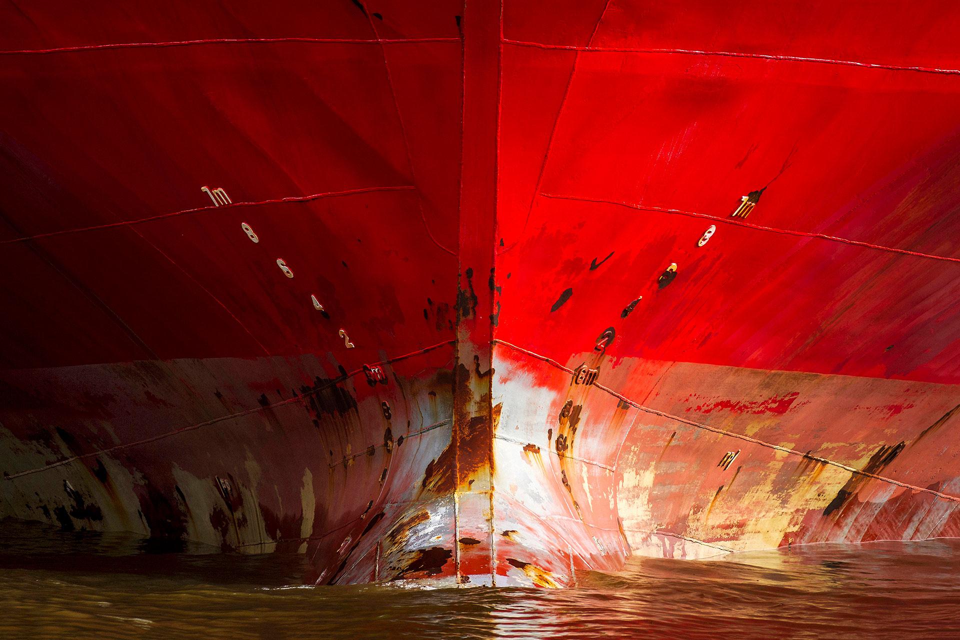 JS001-der-rote-bug-wandbild-bild-auf-leinwand-acrylglas-aludibond