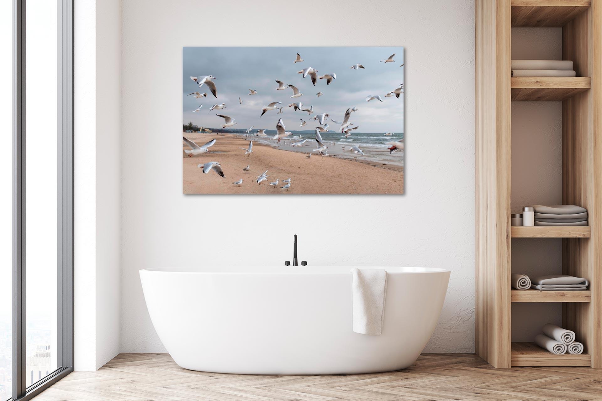 LCW490-mewa-moewe-ostsee-wandbild-leinwand-acrylglas-aludibond-bad