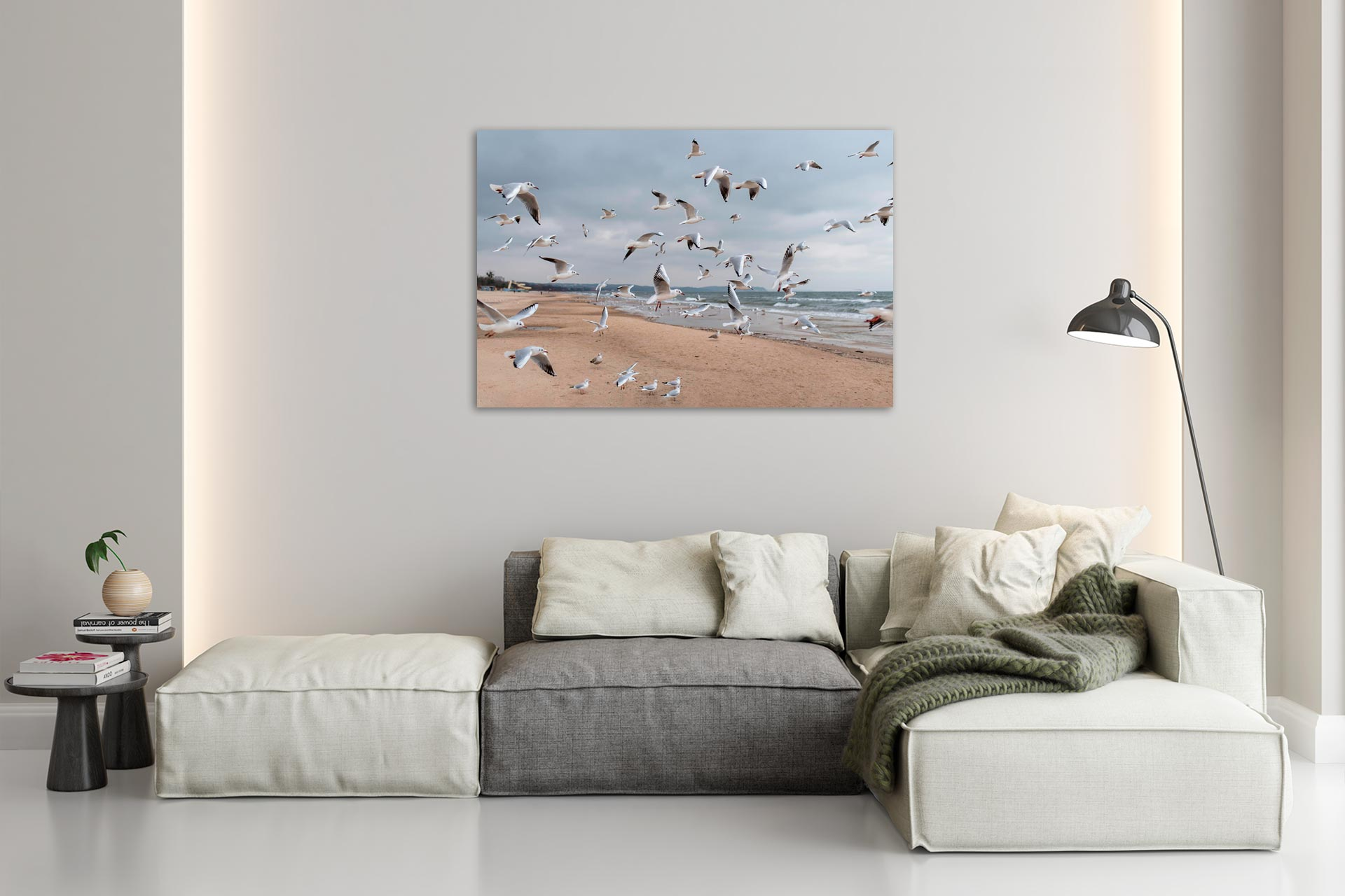 LCW490-mewa-moewe-ostsee-wandbild-leinwand-acrylglas-aludibond-wohnzimmer